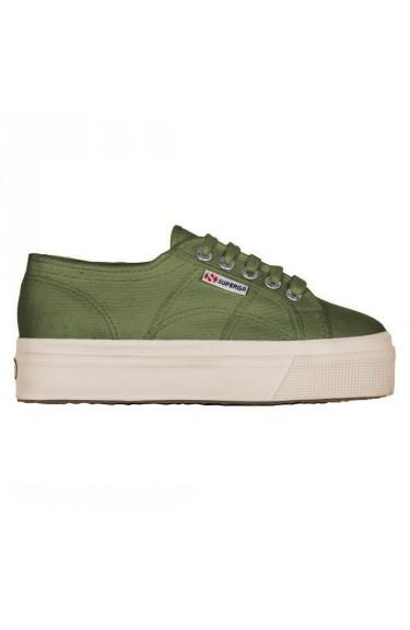 2790  Green Olive